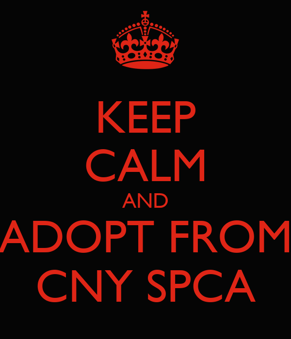 KEEP CALM AND ADOPT FROM CNY SPCA