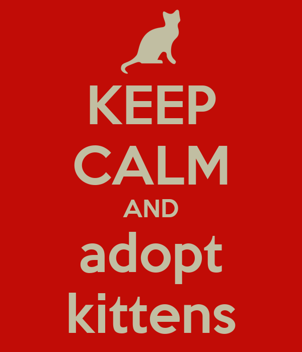 KEEP CALM AND adopt kittens