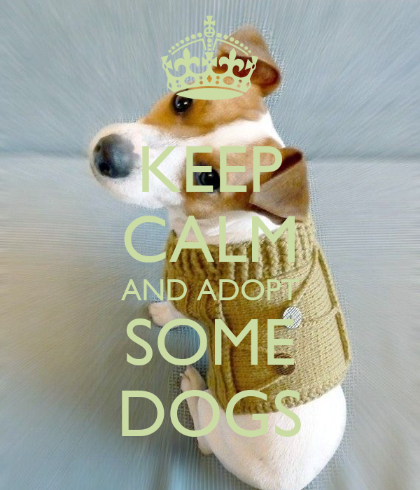 KEEP CALM AND ADOPT SOME DOGS