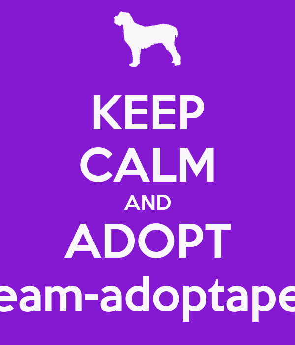 KEEP CALM AND ADOPT team-adoptapet