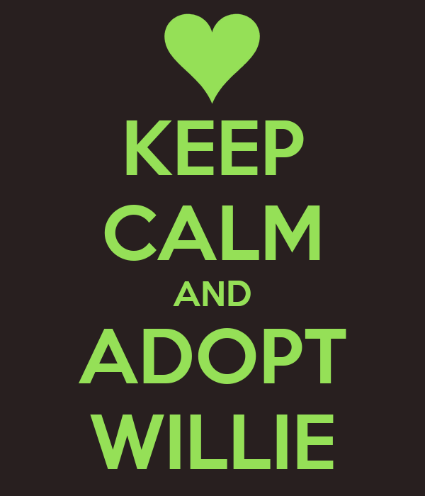 KEEP CALM AND ADOPT WILLIE
