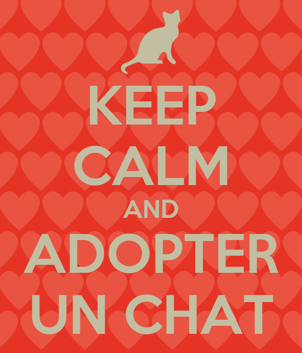 KEEP CALM AND ADOPTER UN CHAT