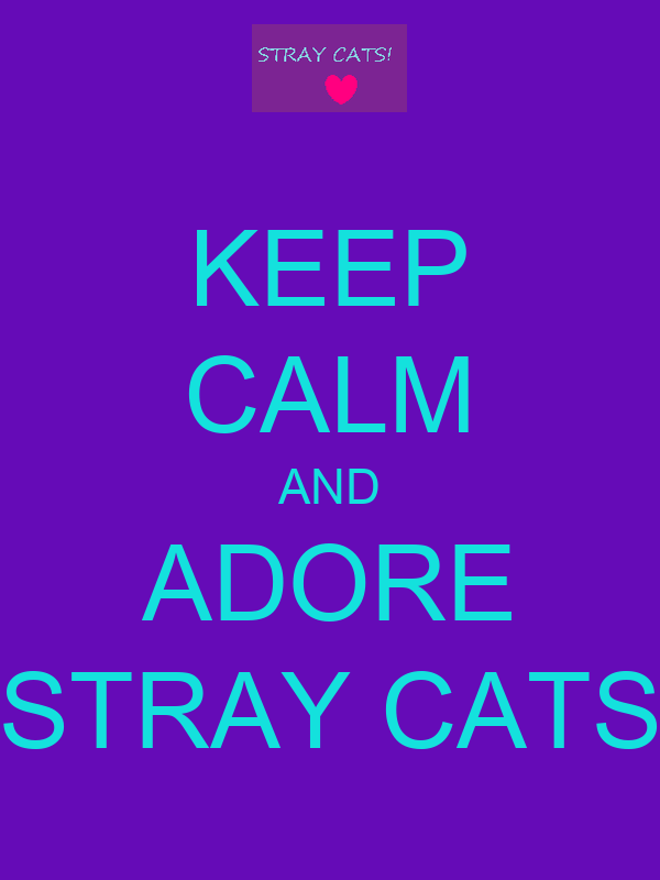 KEEP CALM AND ADORE STRAY CATS