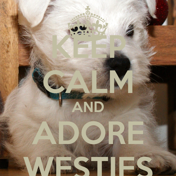 KEEP CALM AND ADORE WESTIES