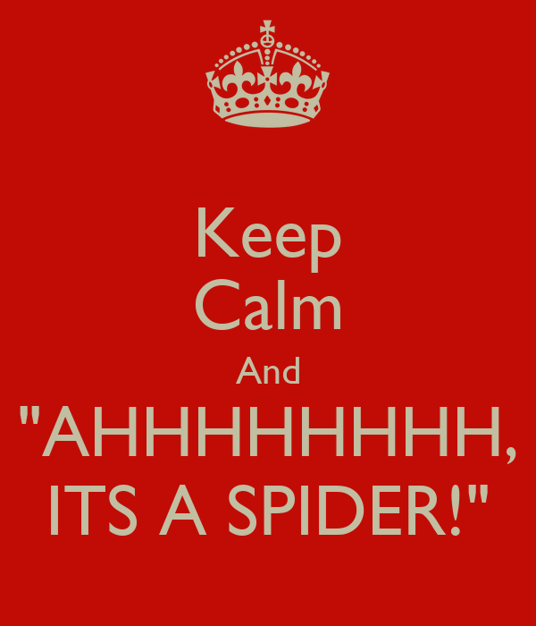 "Keep Calm And ""AHHHHHHHH, ITS A SPIDER!"""