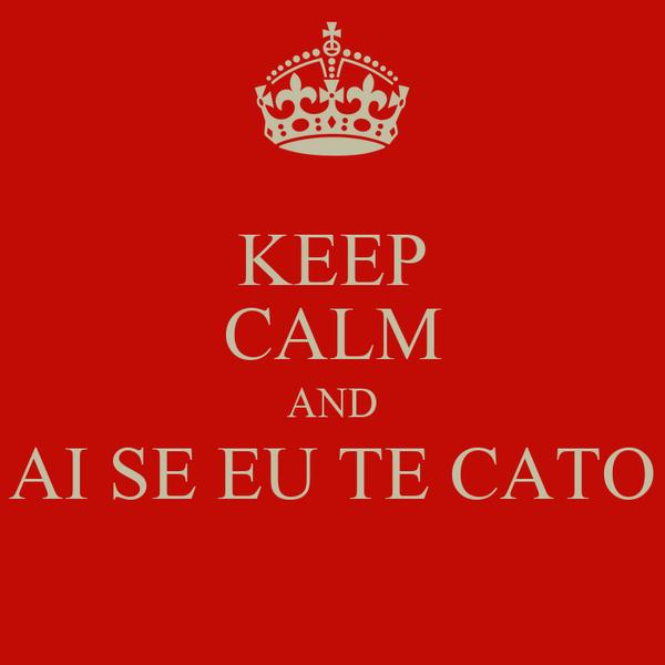 KEEP CALM AND AI SE EU TE CATO