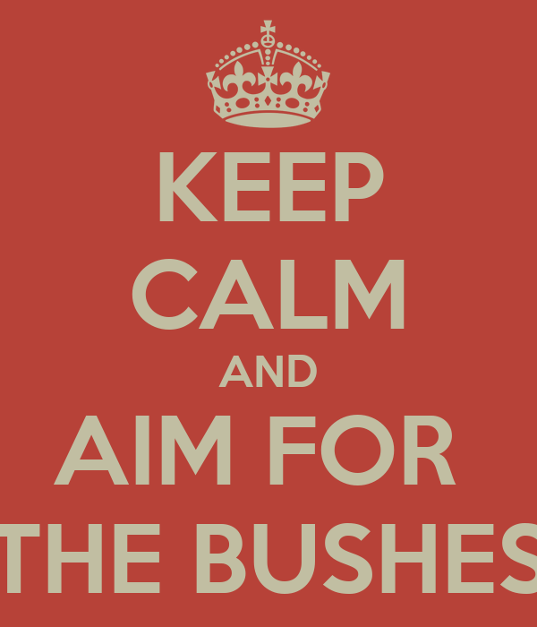 KEEP CALM AND AIM FOR  THE BUSHES