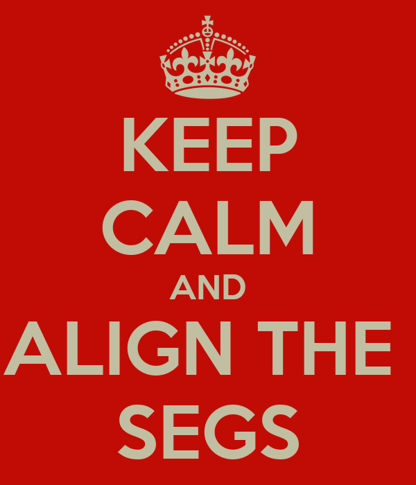 KEEP CALM AND ALIGN THE  SEGS