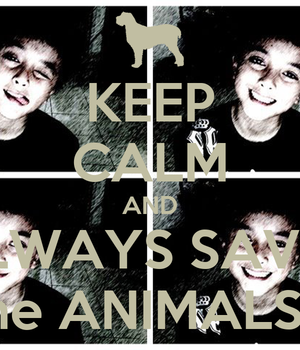 KEEP CALM AND ALWAYS SAVE's the ANIMALS..!