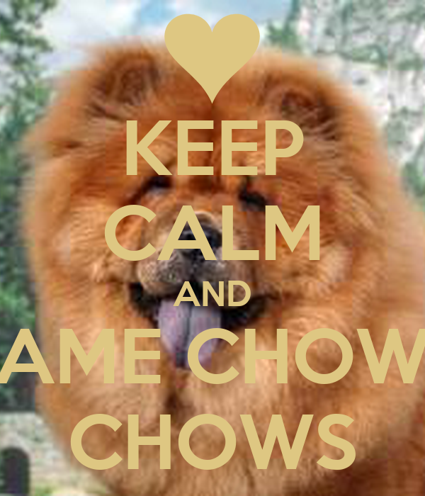 KEEP CALM AND AME CHOW CHOWS