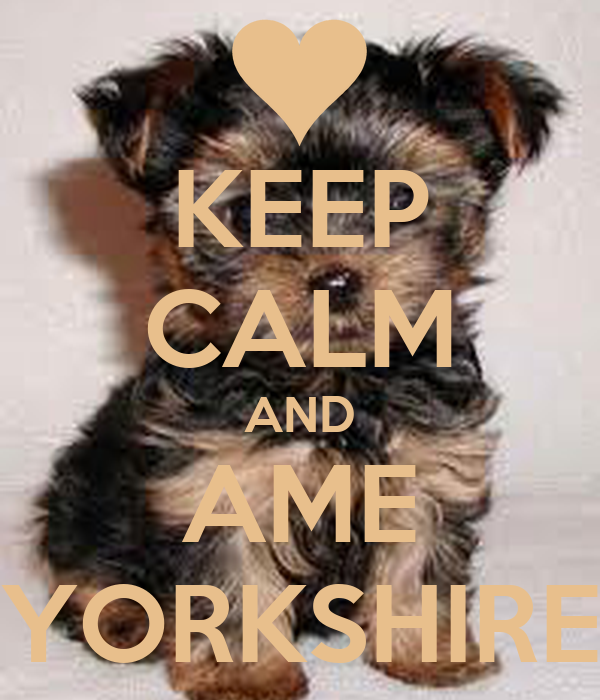 KEEP CALM AND AME YORKSHIRE