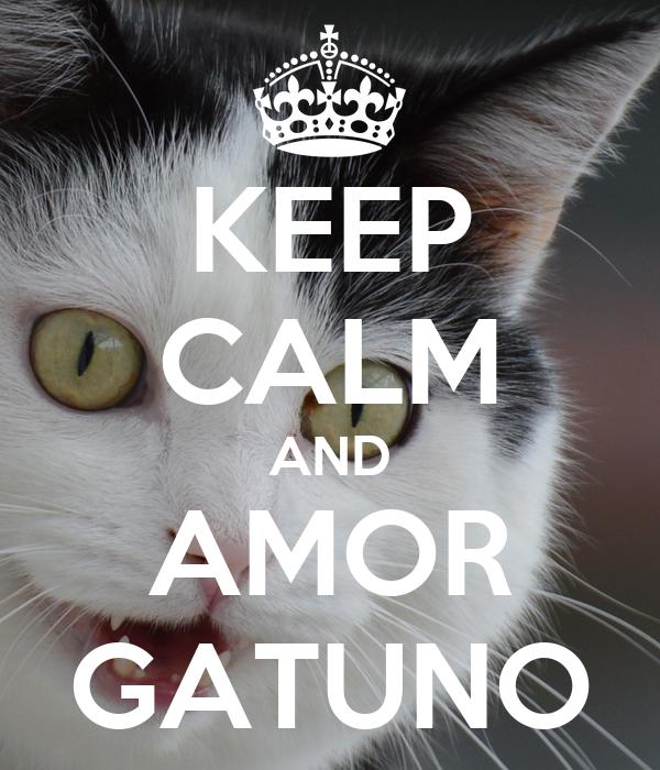 KEEP CALM AND AMOR GATUNO