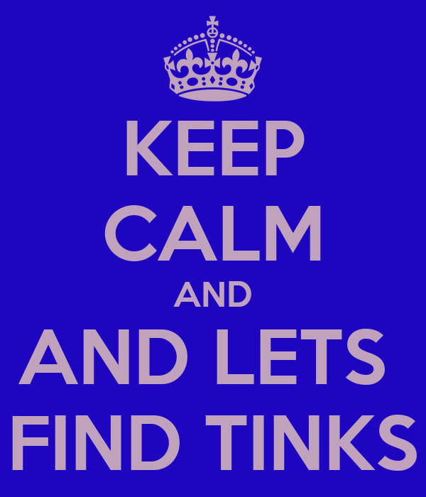 KEEP CALM AND AND LETS  FIND TINKS