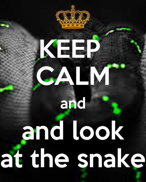 KEEP  CALM and and look at the snake