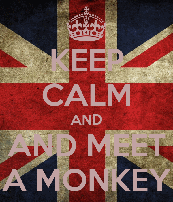 KEEP CALM AND AND MEET A MONKEY