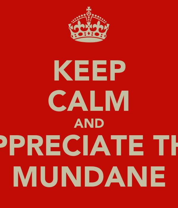 KEEP CALM AND APPRECIATE THE MUNDANE