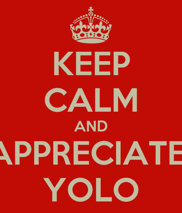 KEEP CALM AND APPRECIATE  YOLO