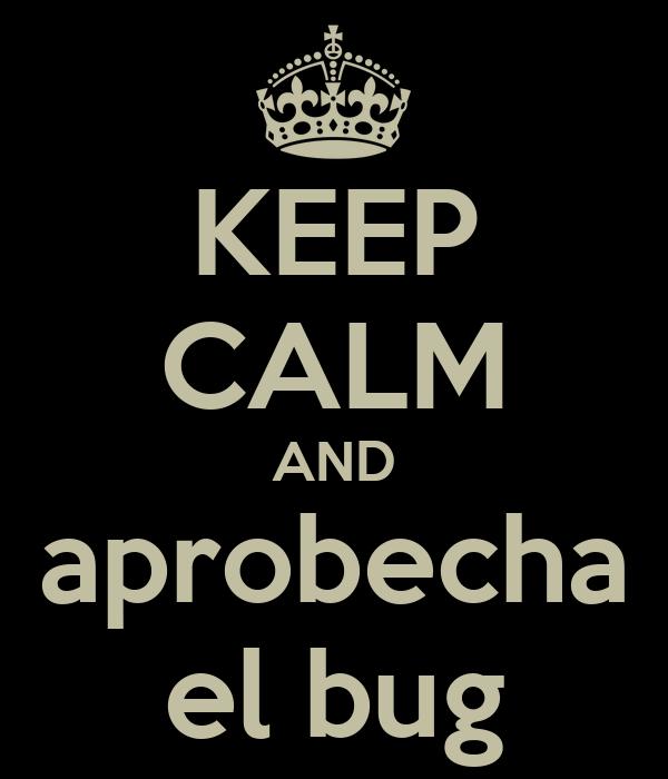 KEEP CALM AND aprobecha el bug