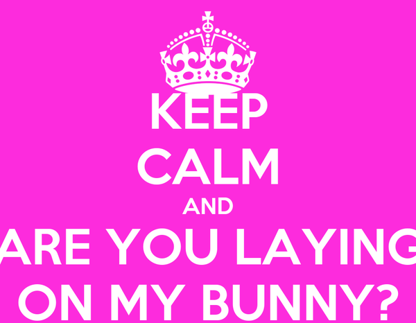 KEEP CALM AND ARE YOU LAYING ON MY BUNNY?