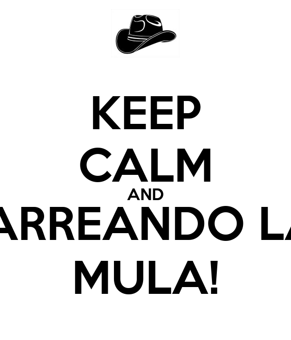 KEEP CALM AND ¡ARREANDO LA MULA!