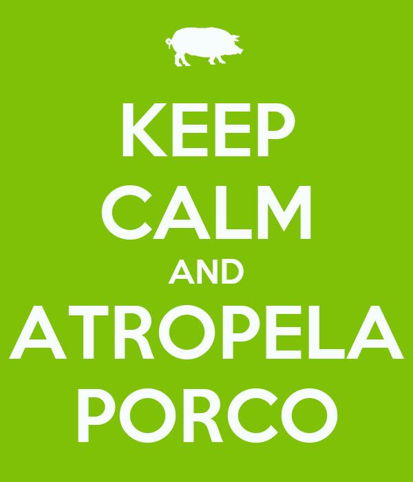 KEEP CALM AND ATROPELA PORCO