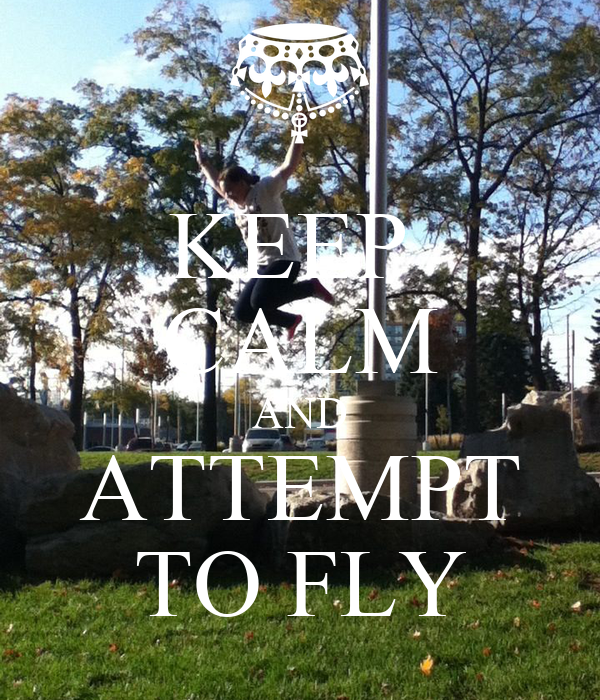 KEEP  CALM AND ATTEMPT TO FLY