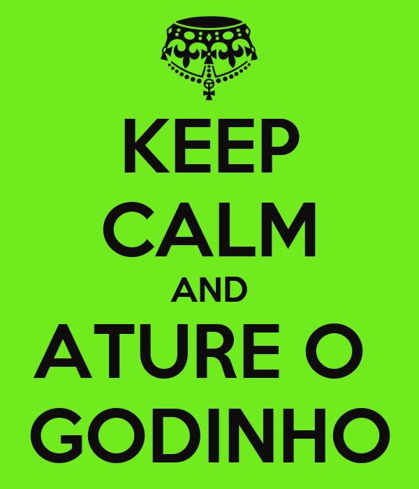 KEEP CALM AND ATURE O  GODINHO