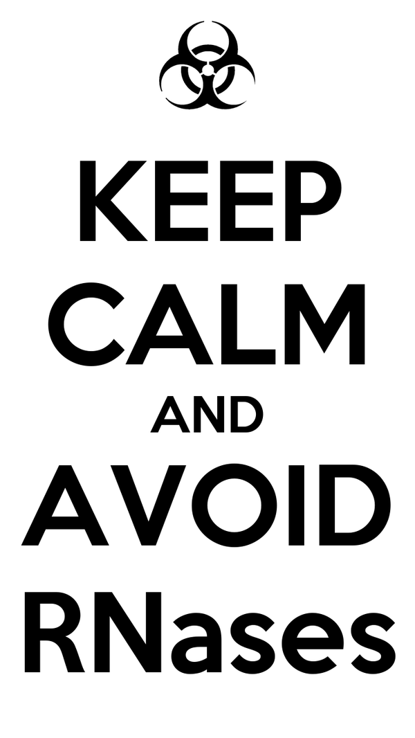 KEEP CALM AND AVOID RNases