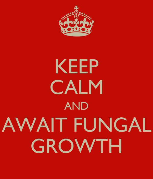 KEEP CALM AND AWAIT FUNGAL GROWTH