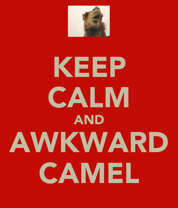 KEEP CALM AND AWKWARD CAMEL
