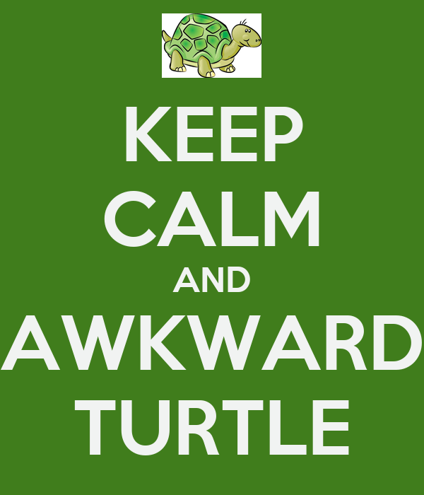 KEEP CALM AND AWKWARD TURTLE