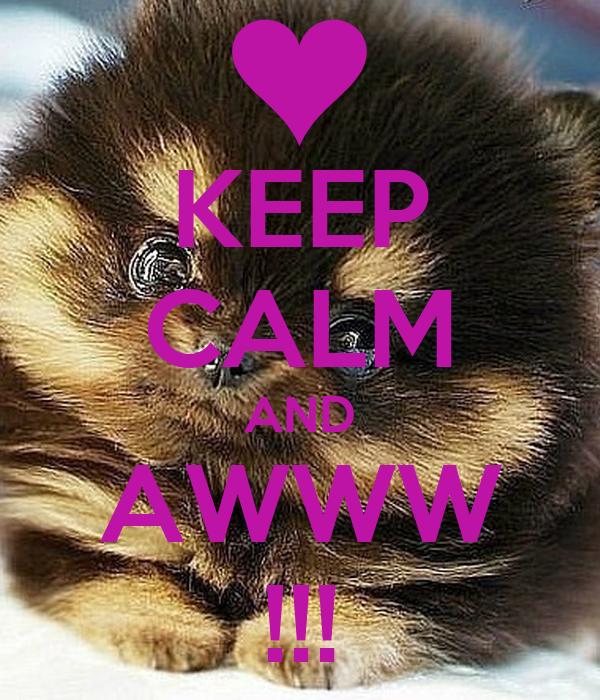 KEEP CALM AND AWWW !!!