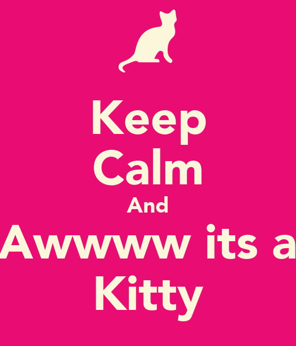 Keep Calm And Awwww its a Kitty
