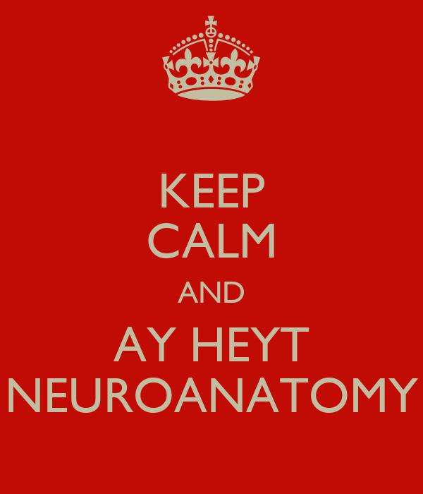KEEP CALM AND AY HEYT NEUROANATOMY
