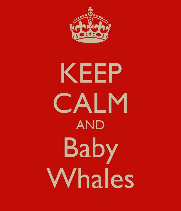 KEEP CALM AND Baby Whales