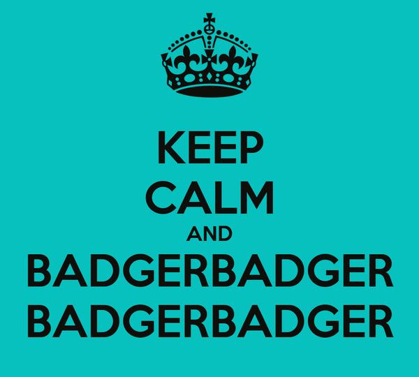 KEEP CALM AND BADGERBADGER BADGERBADGER