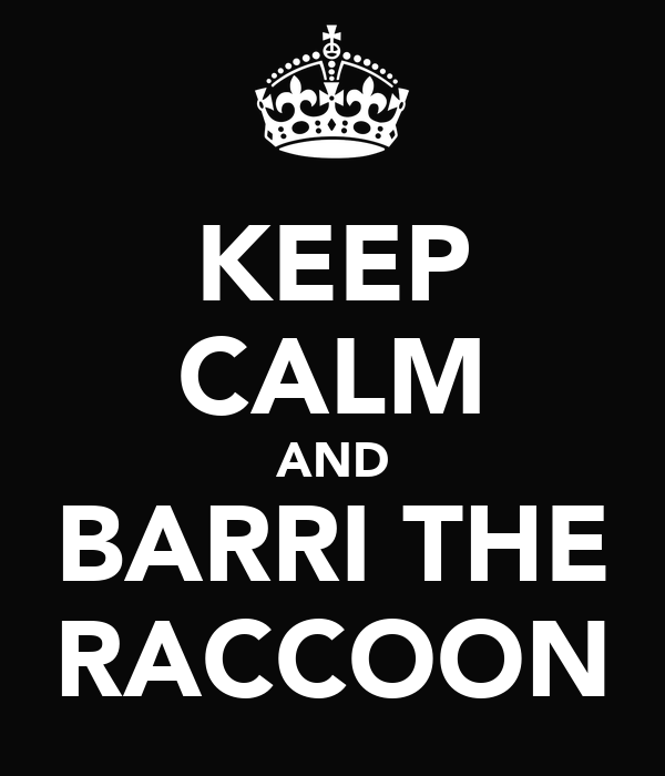 KEEP CALM AND BARRI THE RACCOON