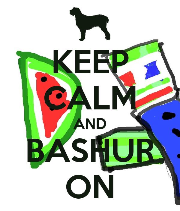KEEP CALM AND BASHUR ON