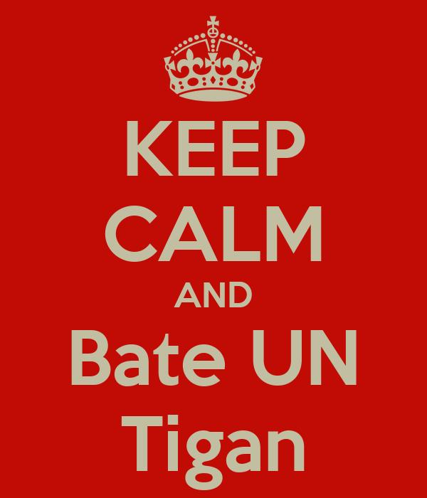 KEEP CALM AND Bate UN Tigan