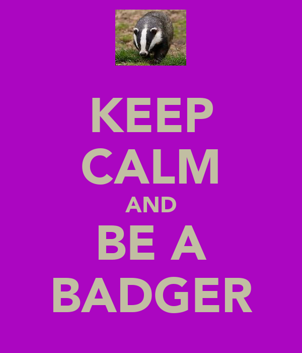 KEEP CALM AND BE A BADGER
