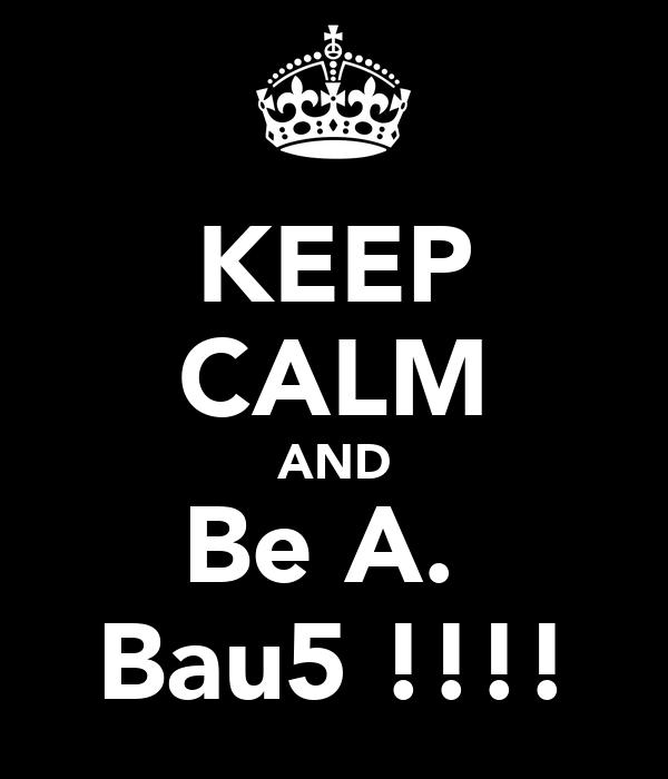 KEEP CALM AND Be A.  Bau5 !!!!