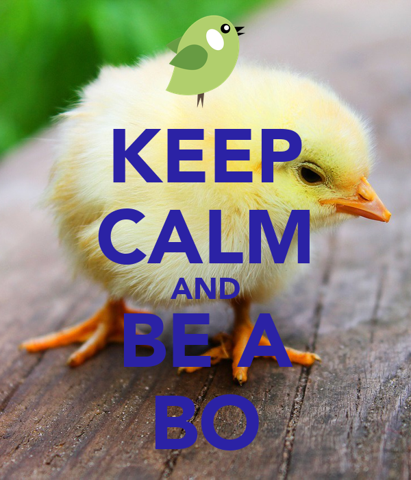 KEEP CALM AND BE A BO