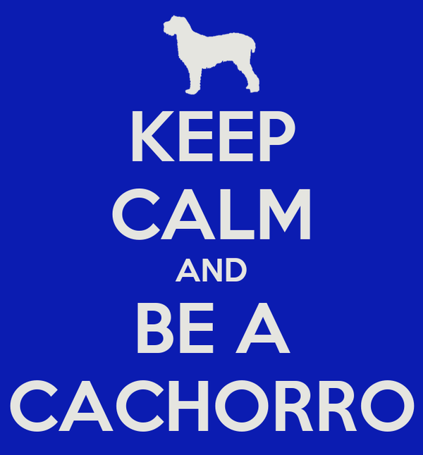 KEEP CALM AND BE A CACHORRO