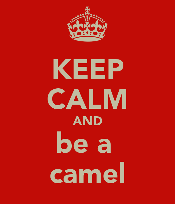 KEEP CALM AND be a  camel