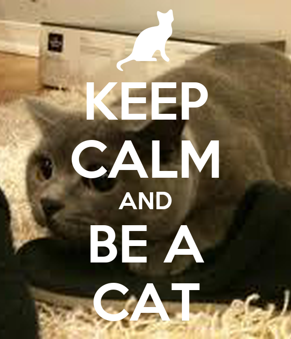 KEEP CALM AND BE A CAT