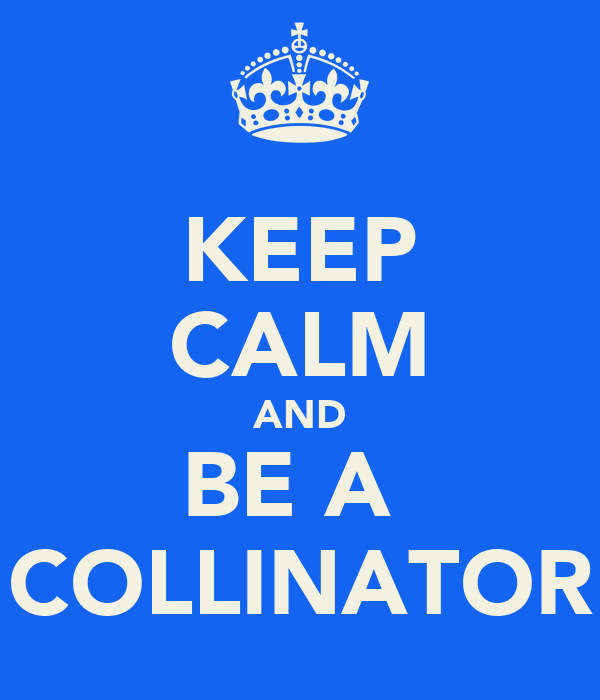 KEEP CALM AND BE A  COLLINATOR