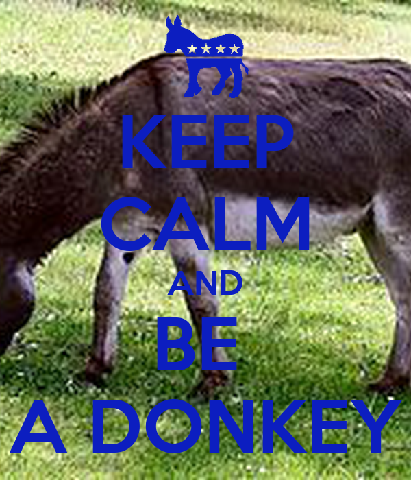 KEEP CALM AND BE  A DONKEY