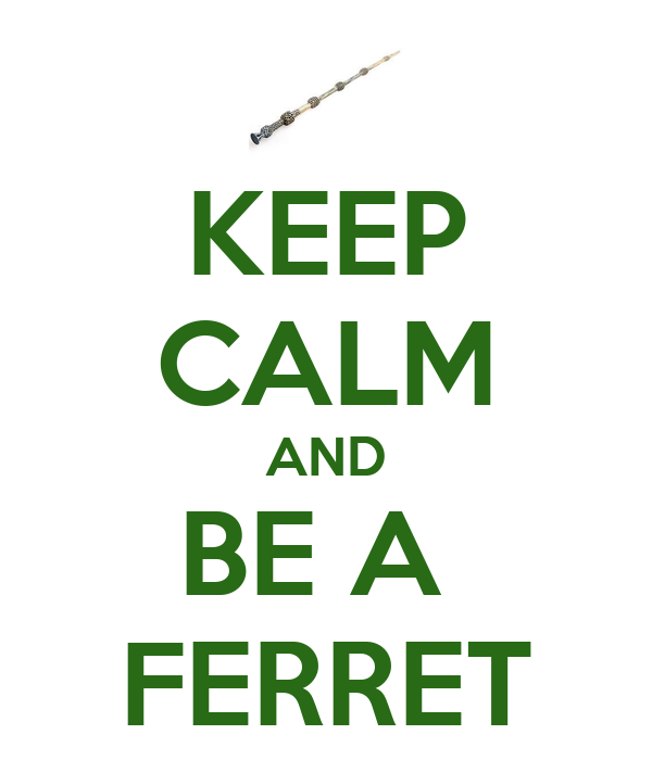 KEEP CALM AND BE A  FERRET