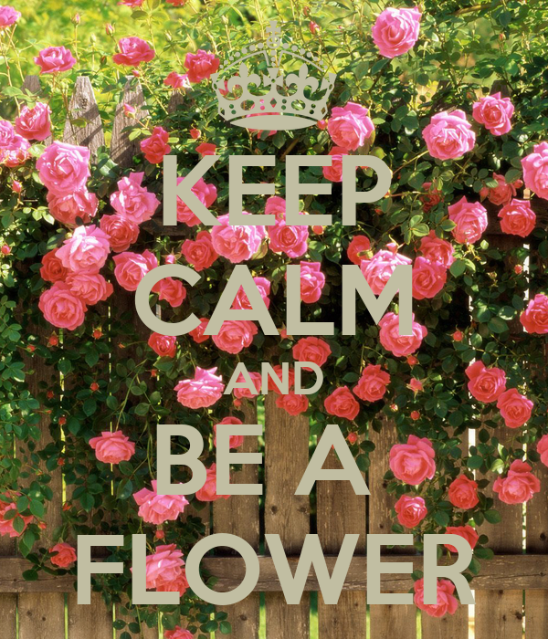 KEEP CALM AND BE A  FLOWER