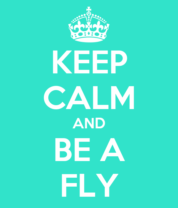 KEEP CALM AND BE A FLY